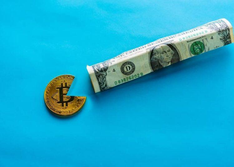 ¿Pueden las criptomonedas un día superar a las monedas fiduciarias?